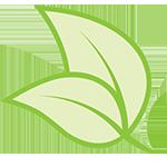 Leaf icon Carleton clean air technologies